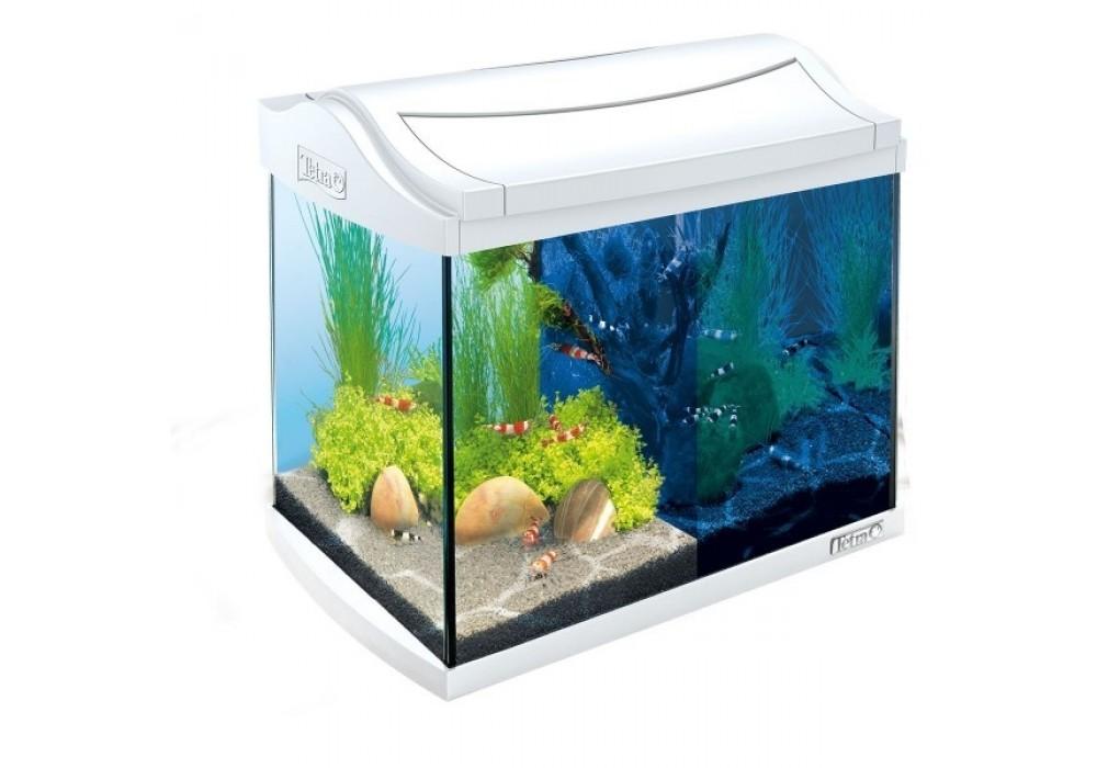 Tetra AquaArt Aquarium-Komplett-Set LED 30 L Crayfish weiß (244894)
