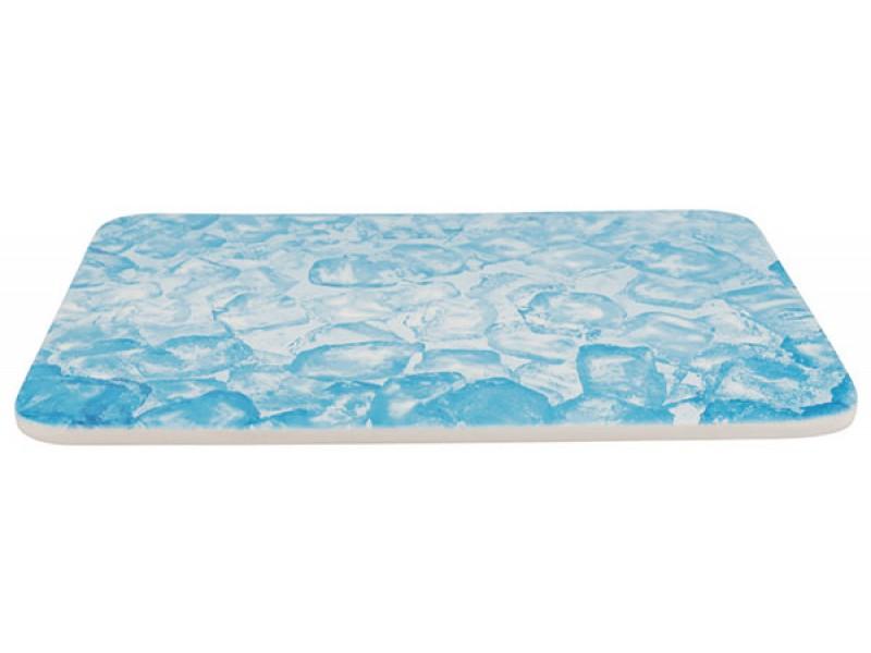 TRIXIE Kühlplatte für Kleintiere 28x20cm blau (63010)
