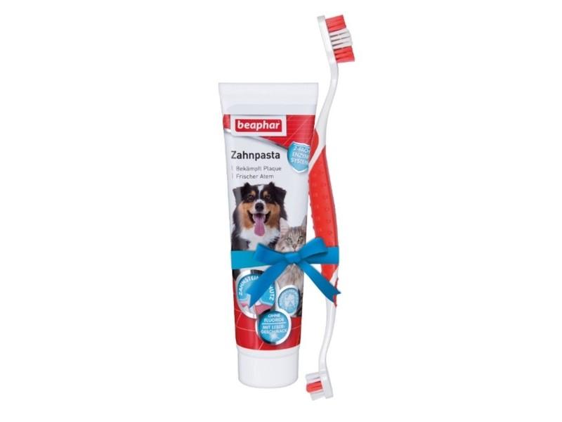 Zahnpflege Set