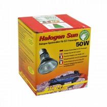 Lucky Reptile Halogen Sun 50 W (63401)* Restbestand
