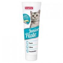Junior Paste Katze