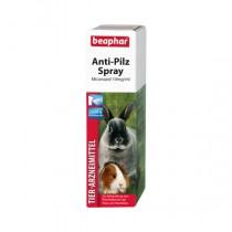 Anti-Pilz Spray