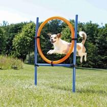 TRIXIE Hunde Sport Agility Ring 115×ø3cm, ø65cm (3208)
