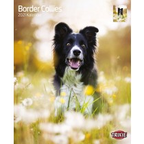TRIXIE Kalender - Border Collies (12550)