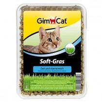 Soft-Gras