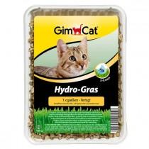Hydro-Gras