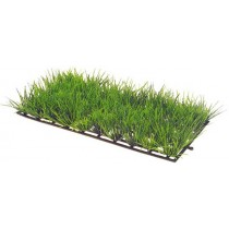 Plant Mat 1
