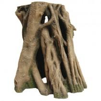 HOBBY Azalea Root 2