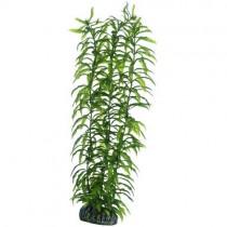 HOBBY Heteranthera 34 cm Kunstpflanze (51567)