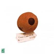 Cocos Cava