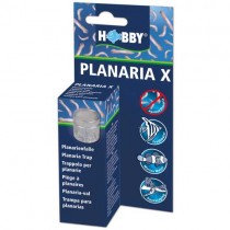 HOBBY Planaria X Planarienfalle (61345)
