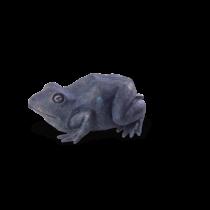 speier-frosch