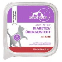Diabetes/Übergewicht mit Rind