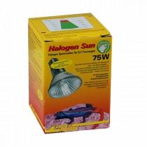 Lucky Reptile Halogen Sun 75 W (63402)* Restbestand