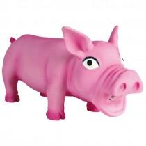 Schwein Latex