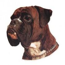 Aufkleber Boxer