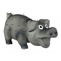 Schwein schwarz