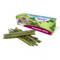 Katzenminze-Sticks