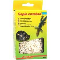 Lucky Reptile Bio Calcium Sepia Stücke 100g (67021)