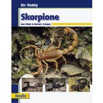 Skorpione / Webb