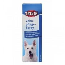 Zahnpflege-Spray
