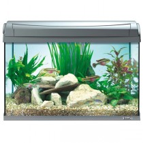 AquaArt Aquarium-Komplett-Set LED 60 L