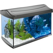Tetra AquaArt Aquarium-Komplett-Set LED 60 L anthrazit (239937)