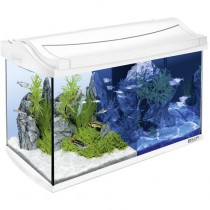 AquaArt Aquarium-Komplett-Set LED 60 L weiß