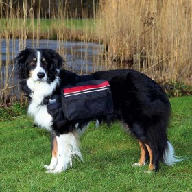 TRIXIE Rucksack für Hunde in 2 Größen