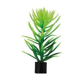 HOBBY Didiplis mini (1,5x1,5x6cm) Kunstpflanze (51544)