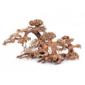 Aqua Bonsai Baum L