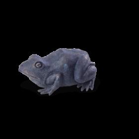 OASE Wasserspeier Frosch*