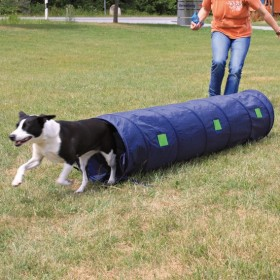 TRIXIE Agility Tunnel D40x2m