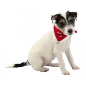 TRIXIE Weihnachts-Halsband mit Tuch Necki Hund/Katze