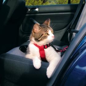 TRIXIE Auto Sicherheitsgeschirr Katze