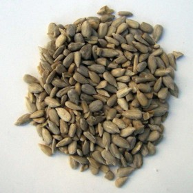 LandPartie Sonnenblumenkerne geschält 2,5kg (813022)