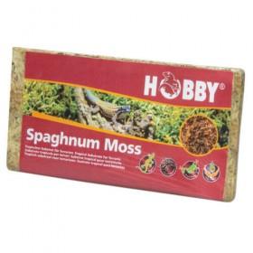 HOBBY Sphagnum Moos 100g (34170)