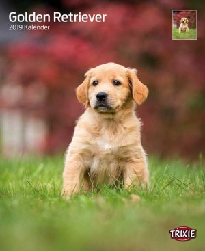 TRIXIE Kalender - Golden Retriever