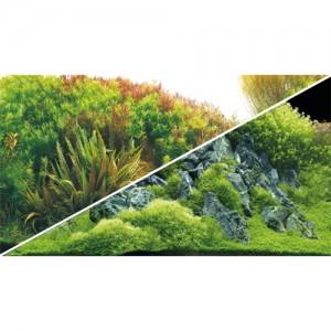 Foto-Rückwand Planted River/Green Rocks