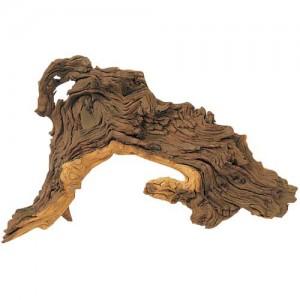 Mopani Tropenholz