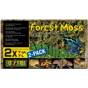 Forest Moos