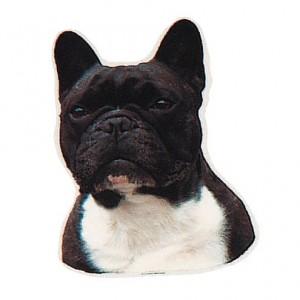 Aufkleber Französische Bulldogge