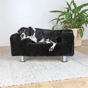 Hundekönig Sofa live